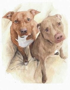 Pitbulls Watercolor Portrait Drawing by Mike Theuer Watercolor Portraits, Watercolor Paintings, Pitbull Drawing, Baby Animals, Cute Animals, Watercolour Tutorials, Dog Paintings, Painting Process, Watercolor Animals