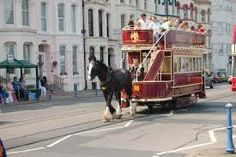 Horse Drawn tram on Douglas Seafront (C) John Firth Man On Horse, Manx, Horse Drawn, Isle Of Man, Public Transport, To Go, Street View, Horses, Travel