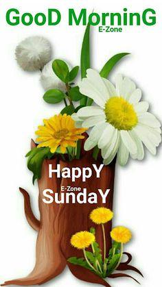 Sunday Morning Wishes, Good Morning Happy Weekend, Good Morning Sister, Sunday Greetings, Morning Qoutes, Good Morning Prayer, Cute Good Morning, Good Morning Flowers, Morning Greeting
