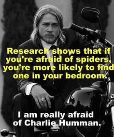 Ha! I'm really, really afraid!!!