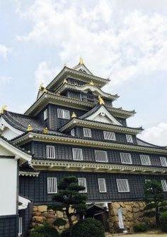 岡山城  黒漆塗りの下見板を取り付けていることから別名烏城と呼ばれているそうです(-)  また変わった雰囲気でカッコいいですね tags[岡山県]