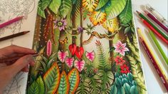MAGICAL JUNGLE | Adult Coloring Book by Johanna Basford | Coloring With ...