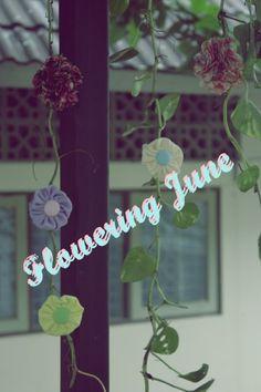flowering june
