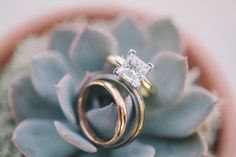 Gorgeous Ring in This Purple Vineyard Wedding by J Wiley on Inspired By This.