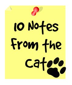 10 Notes From the Cat | GoneCatawampus.com
