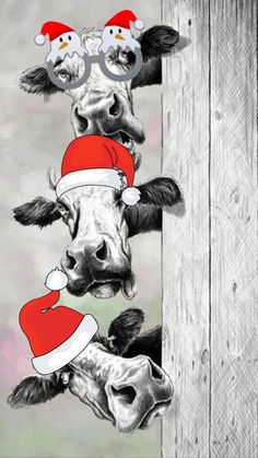 Christmas Hacks, Christmas Scenes, Christmas Animals, Christmas Deco, Christmas Crafts, Xmas Wallpaper, Cow Gifts, Cow Pictures, Cow Painting