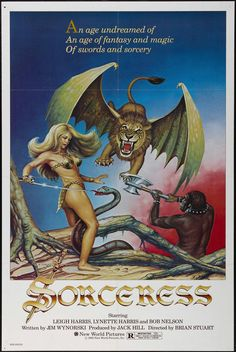 a look at the swords & sorcery movies of the - Sorceress poster Fantasy Movies, Sci Fi Fantasy, Dark Fantasy, Barbarian Woman, Kino International, Evil Wizard, Cult, Sword And Sorcery, Movie Tv