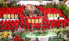 제21차 김정일화축전장을 찾아서(2)