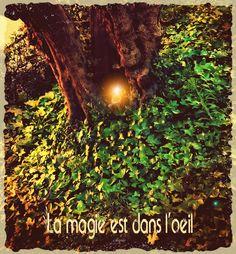 """La Magie!""  SAGRA·CASAS Designer"