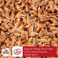 #NaturalWheatBranFibre is extracted from the bran of the wheat kernel, which is where almost all of the fibre in wheat is found. Wheat germ comes from a separate part of the kernel.