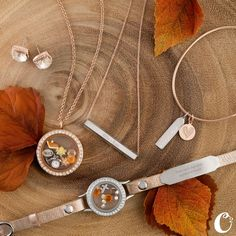 Design your Fall jewelry with Origami Owl.
