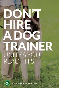 Obedience is something that all dogs have to learn. And it's more difficult for some than others. Don't hire a dog trainer before your read this!