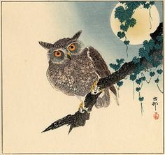 """Scops Owl on a Branch, Full Moon Above"" by Ohara Koson, Early 1930's"