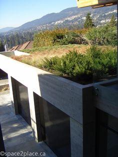 Green Roof - West Vancouver by debora