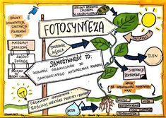 School Organization Notes, Aga, Study, Education, Biochemistry, Studio, Studying, Onderwijs, Learning