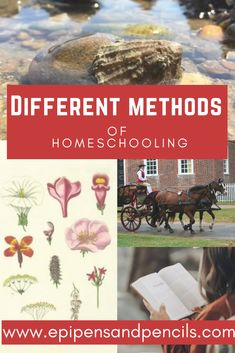 No matter if you are a new #homeschooler or a veteran, there are many different methods of #homeschooling to choose from for teaching your children. Charlotte Mason, Classical, Unschooling, and more are some of the options that this post covers.