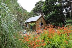 Straw bale, cob house, tiny house projects