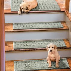 Weave Washable Stair Treads will help protect your wood flooring while providing more secure footing for you and your pets. These slip-resistant rugs are made of machine washable cotton.