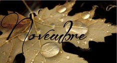 50 Imagenes bonitas para recibir al mes de noviembre y compartir