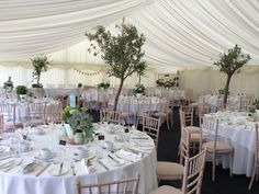 Olive trees making a beautiful addition to our marquee Wedding Decorations, Table Decorations, Olive Tree, Wedding Designs, Wedding Ideas, Table Settings, House, Furniture, Beautiful