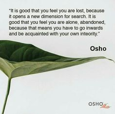 """""""It is good that you feel you arettttttt tttttt because it opens a new dimension for search."""" Osho Excerpted from Talk of """"From Death to… Osho Quotes On Life, Rumi Quotes, Inspirational Quotes, Attitude Quotes, Quotes Quotes, Awakening Quotes, Spiritual Awakening, Change Quotes, Quotes To Live By"""