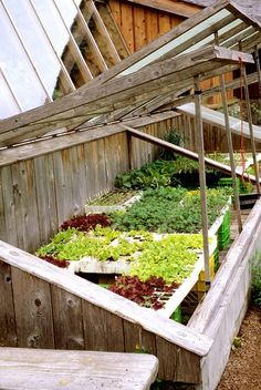 Cold frames provide cover