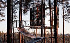 """Treehotel es un proyecto concebido por Kent lindvall. Está ubicado en Suecia, a unos 60 km al sur del Círculo Polar Ártico. Actualmente, consta de seis estructuras diseñadas por cinco arquitectos diferentes: Sandell & Sandberg, Interior Group ab, Marten Cyrene, Inredningsgruppen y Tham&Videgard architects. Cada habitación varía de tamaño (entre 15 y 30m2); se colocan … Continuar leyendo """"Treehotel"""""""