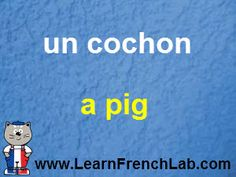 http://www.learnfrenchlab.com   Learn French #words  blue = masculine  pink = feminine