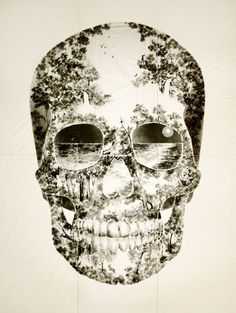 Skull background with Miami scenes in the eye sockets.