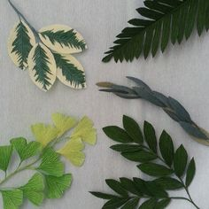 "It wounds my soul deeply whenever I hear leaves referred to as just ""filler"". Any interest in a primer on paper leaves w/ templates? Paper Flower Art, Paper Flowers Craft, How To Make Paper Flowers, Paper Flower Backdrop, Giant Paper Flowers, Fake Flowers, Flower Crafts, Diy Flowers, Fabric Flowers"