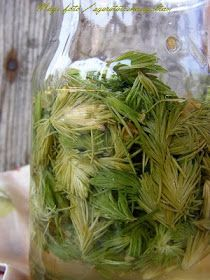 Natural Remedies, Health Fitness, About Me Blog, Herbs, Nature, Cosmetics, Food, Naturaleza, Essen