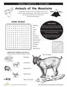 Worksheets: Animal Habitats: Mountains