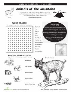 Worksheets: Animal Habitats: Mountains