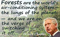 """Deforestation quote Prince Charles """"Forests are the world's air conditioning…on the verge of switching it off"""" Rainforest photo Save Planet Earth, Save Our Earth, Gaia, Great Quotes, Inspirational Quotes, Motivational, Science Today, Life Science, Save Mother Earth"""