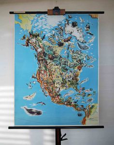 Vintage Wildlife Map of the United States/North America - School Wall Pull Down Chart - Geography, Natural History, USA Mexico Canada Travel  Here we are offering a vintage school pull-down wall wildlife/natural history map depicting the prominent animal species of North America. Made in Germany from Georg Westermann (Braunschweig, Germany) and dates approximately to the 1960s. Printed on a fiber-reinforced paper and mounted on wood supports. It is a beautifully illustrated map in a very…