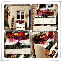 Bought these draws for a fiver from a car boot sale and made this beauty out of them #craft #garden #flowers #DIY #shabbychic #carboot