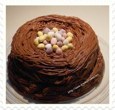 Cheer up your kids with these Cute Easter Cakes and Easter Egg Cake and make Easter brings back its memories of moms baking a traditional egg cake. Chocolate Easter Cake, Chocolate Nests, Easter Egg Cake, Oreo Cream, Homemade Bird Feeders, Egg Nest, Bird Party, Oreo Cupcakes, Egg Sandwiches