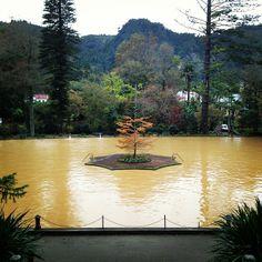 terra nostra, (at Parque Terra Nostra)