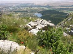 Marloth Nature Reserve (Swellendam) - All You Need to Know BEFORE You Go - Updated 2020 (Swellendam, South Africa) - Tripadvisor Rare Birds, Holiday Activities, Nature Reserve, Mountain View, Hiking Trails, Conservation, Videos, Wild Flowers, South Africa