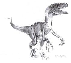 Velociraptor! Favorite dino... Just sayin :)