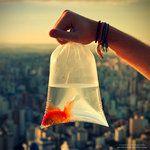 Lovely photo taken by *oO-Rein-Oo