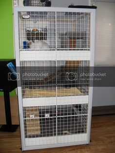 Our bunny's luxury condo (Picture-heavy!) - Housing and Environment - HARE CARE - Rabbits Online Forum Bunny Cages, Rabbit Cages, House Rabbit, Pet Rabbit, Rabbit Habitat, Inside Castles, Bunny Room, Dwarf Rabbit, Bunny Hutch