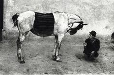 "Josef Koudelka ""Gypsy with his Horse / Romania"" (1968)"