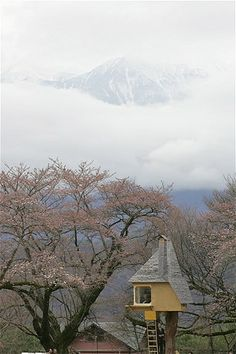Image: A Japanese tea ceremony room built as a treehouse. The room sits on top of a 12-foot-high Japanese cypress tree. Surrounded by cherry trees, the teahouse looks out over the southern Japan Alps, Yamanashi, Japan. (© Masatoshi Okauchi/Rex Features)