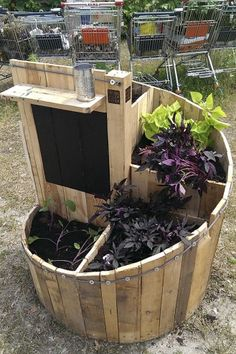 Neat use for old pallets—designed as a small garden option for urban dwellers, but attractive enough to appeal to anyone.