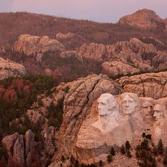 Mt. Rushmore, SD. In the background the red trees have been killed last year by the mountain pine beetle. Right now the worst outbreak of the beetle in the USA is in the Black Hills of South Dakota. Photo by @peteressick on assignment for @Natalie Brewer. #Padgram
