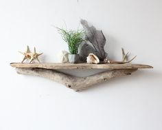 Driftwood Mantle Shelves | Large Sculptural Natural Driftwood Shelf Perfect by OceanSwept