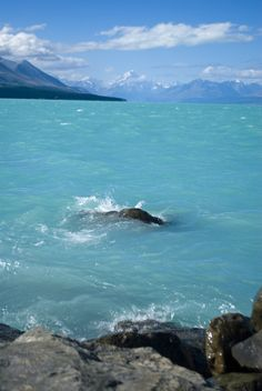 bluepueblo: Turquoise Sea, South Island, New Zealand photo via waves Dream Vacations, Vacation Spots, Places To Travel, Places To See, Places Around The World, Around The Worlds, Outre Mer, Costa, Beautiful Places To Visit