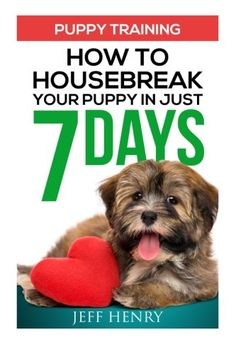 Puppy Training How To Housebreak Your Puppy In Just 7 Days ** Click image for more details.