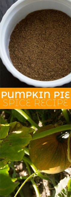 This is the best homemade pumpkin spice blend to use in everything from pumpkin pie, roasted vegetables and hearty stews. Or even add a 1/4 teaspoon to your morning drip coffee. insolenceandwine.com